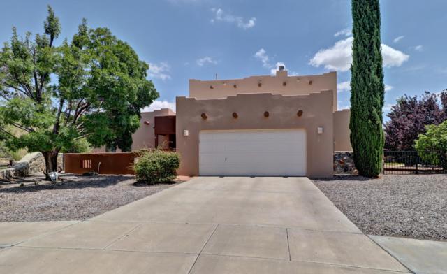 2021 Desert Springs Court, Las Cruces, NM 88011 (MLS #1902169) :: Steinborn & Associates Real Estate