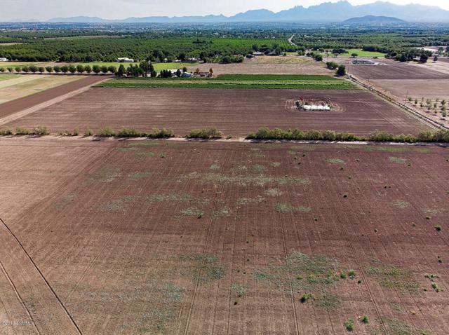 2600 Camino Bodegas, Mesilla, NM 88046 (MLS #1902242) :: Steinborn & Associates Real Estate
