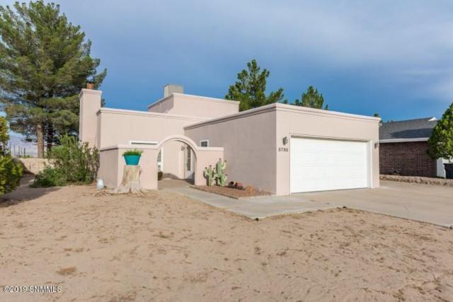 5788 Sandpiper Drive, Santa Teresa, NM 88008 (MLS #1902325) :: Steinborn & Associates Real Estate