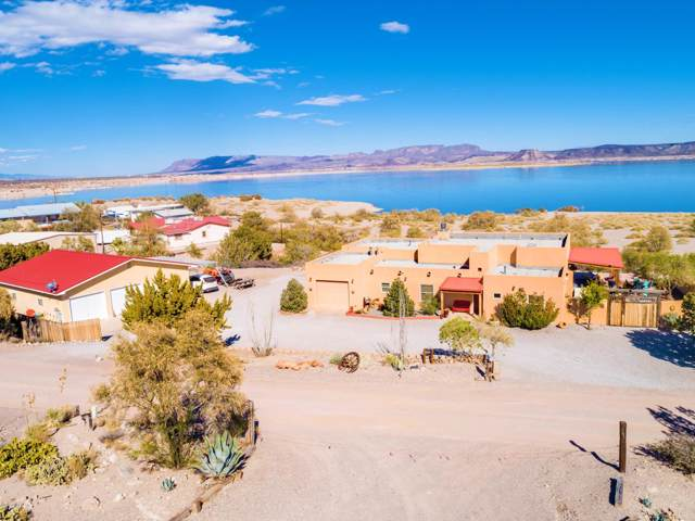 307 Catfish Road, Elephant Butte, NM 87935 (MLS #1902767) :: Steinborn & Associates Real Estate