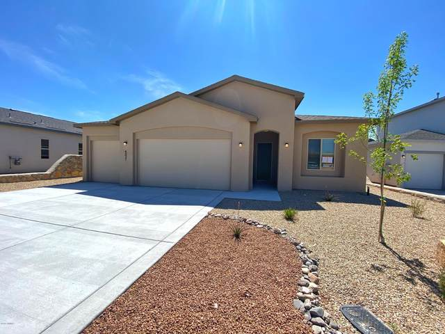 4031 Bravia Dove Loop, Las Cruces, NM 88001 (MLS #1902810) :: Better Homes and Gardens Real Estate - Steinborn & Associates