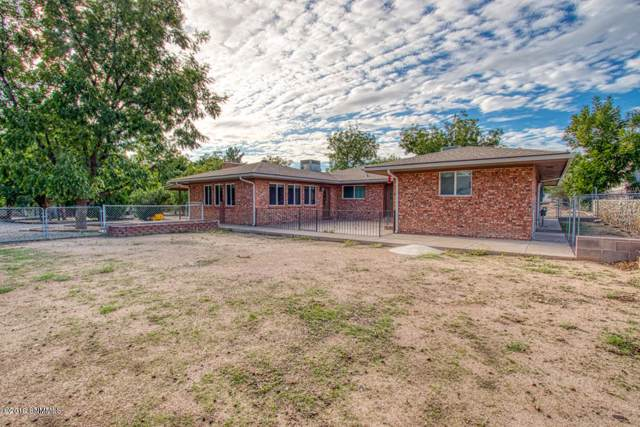 1081 Bleimeyer Road, Las Cruces, NM 88007 (MLS #1902890) :: Steinborn & Associates Real Estate
