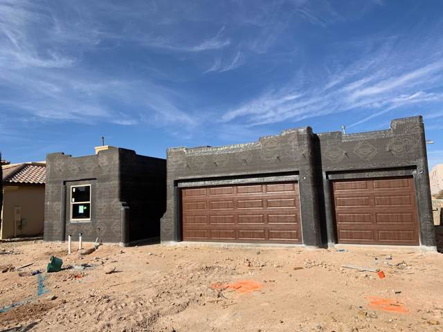 3687 Santa Cecilia Avenue, Las Cruces, NM 88012 (MLS #2000061) :: Steinborn & Associates Real Estate