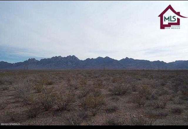 4748 Horse Springs Court, Las Cruces, NM 88011 (MLS #2000213) :: Steinborn & Associates Real Estate