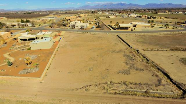 800 Sandy Beach Road, Las Cruces, NM 88005 (MLS #2000278) :: Better Homes and Gardens Real Estate - Steinborn & Associates