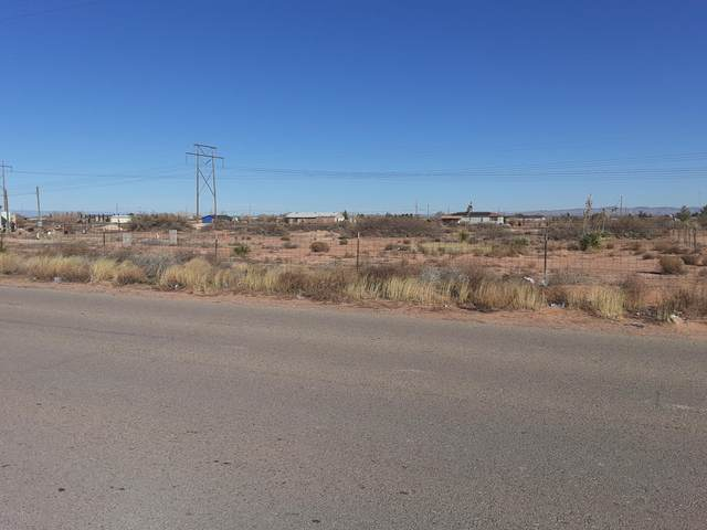 249 Diamondback Drive, Chaparral, NM 88081 (MLS #2000369) :: Steinborn & Associates Real Estate
