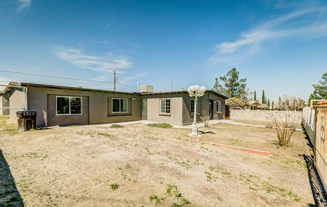 106 Sierra Vista Drive, Sunland Park, NM 88063 (MLS #2000784) :: Better Homes and Gardens Real Estate - Steinborn & Associates