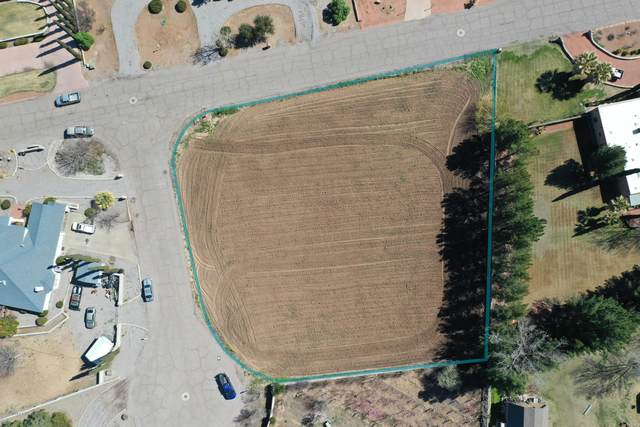 LOT 10 Camino Castillo, Las Cruces, NM 88005 (MLS #2000785) :: Better Homes and Gardens Real Estate - Steinborn & Associates