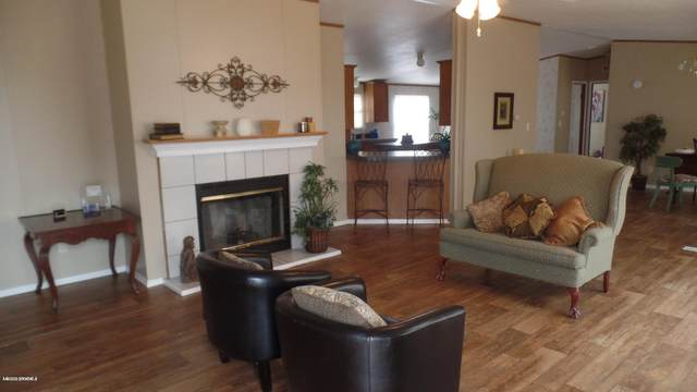 155 Sunrise Mesa, Las Cruces, NM 88012 (MLS #2000836) :: Better Homes and Gardens Real Estate - Steinborn & Associates