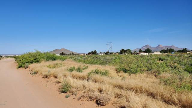 4900 Twin Peaks #3, Las Cruces, NM 88012 (MLS #2000974) :: Better Homes and Gardens Real Estate - Steinborn & Associates