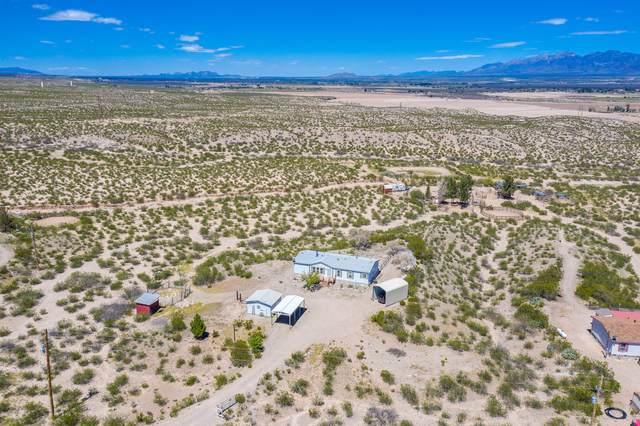 6675 Camino Secreto, La Mesa, NM 88044 (MLS #2001197) :: Better Homes and Gardens Real Estate - Steinborn & Associates