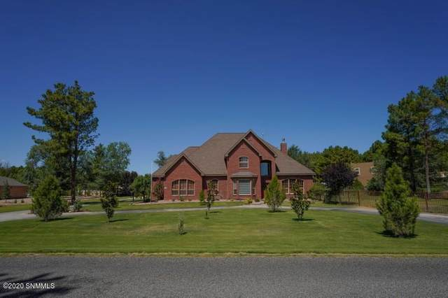 4669 Forest Park Drive, Las Cruces, NM 88007 (MLS #2001775) :: Better Homes and Gardens Real Estate - Steinborn & Associates