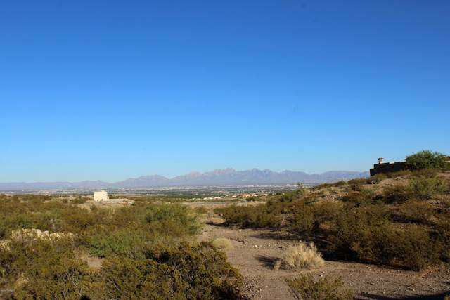 1328 Estancia Real Place, Las Cruces, NM 88007 (MLS #2001824) :: Arising Group Real Estate Associates