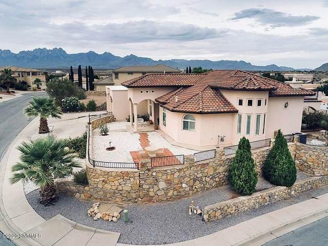 502 Corona Del Campo Loop, Las Cruces, NM 88011 (MLS #2002035) :: Agave Real Estate Group
