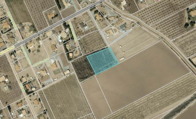 000 Wildwind, Las Cruces, NM 88007 (MLS #2002056) :: United Country Real Estate Revolution
