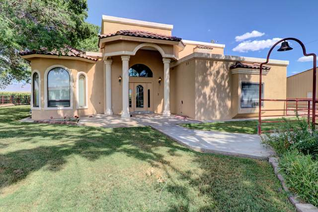 12724 Highway 478, Mesquite, NM 88048 (MLS #2002463) :: Agave Real Estate Group