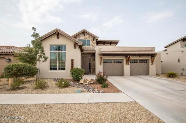 3693 Santa Minerva Avenue, Las Cruces, NM 88012 (MLS #2002539) :: Agave Real Estate Group