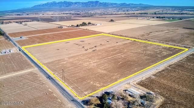 13600 S Highway 28, La Mesa, NM 88044 (MLS #2002758) :: Arising Group Real Estate Associates