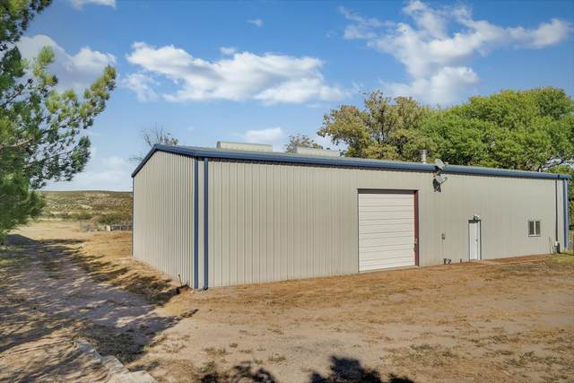 119 Trujillo Creek, Arrey, NM 87930 (MLS #2003053) :: Better Homes and Gardens Real Estate - Steinborn & Associates