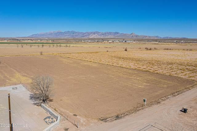 207 S Sunshine Lane, Mesquite, NM 88048 (MLS #2003406) :: Better Homes and Gardens Real Estate - Steinborn & Associates