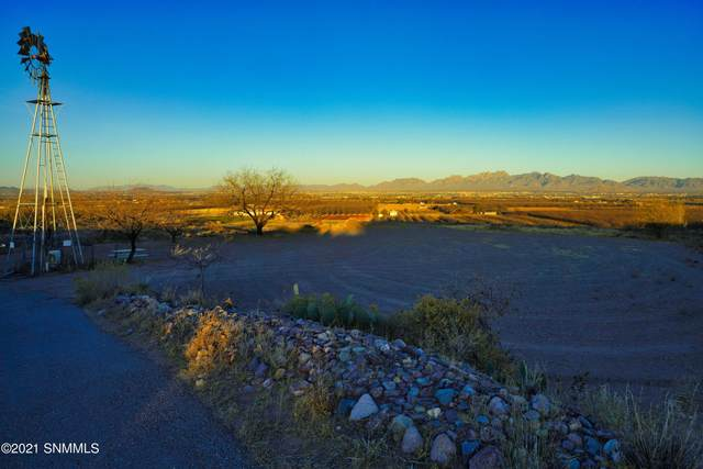 5304A Miller, Las Cruces, NM 88007 (MLS #2100073) :: Better Homes and Gardens Real Estate - Steinborn & Associates