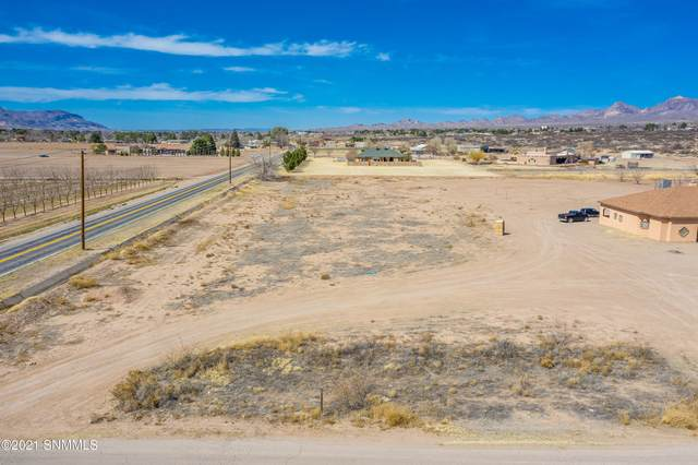 6A Eventing Court, Las Cruces, NM 88007 (MLS #2100342) :: Better Homes and Gardens Real Estate - Steinborn & Associates
