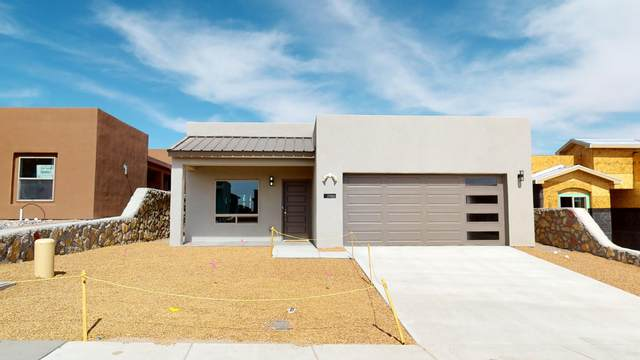 2980 Don Buck Drive, Las Cruces, NM 88011 (MLS #2100365) :: Las Cruces Real Estate Professionals