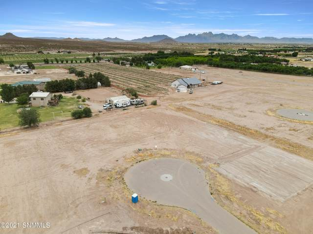 385 Marisa Court, Las Cruces, NM 88007 (MLS #2100487) :: Agave Real Estate Group