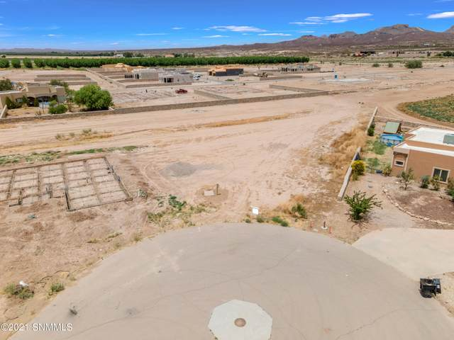390 Ancona Court, Las Cruces, NM 88007 (MLS #2100494) :: Better Homes and Gardens Real Estate - Steinborn & Associates