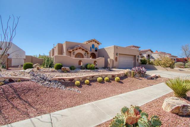 4359 Yavapai Court, Las Cruces, NM 88011 (MLS #2101134) :: Las Cruces Real Estate Professionals