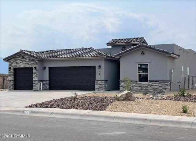 4602 Mesa Corta Drive, Las Cruces, NM 88011 (MLS #2101522) :: Agave Real Estate Group