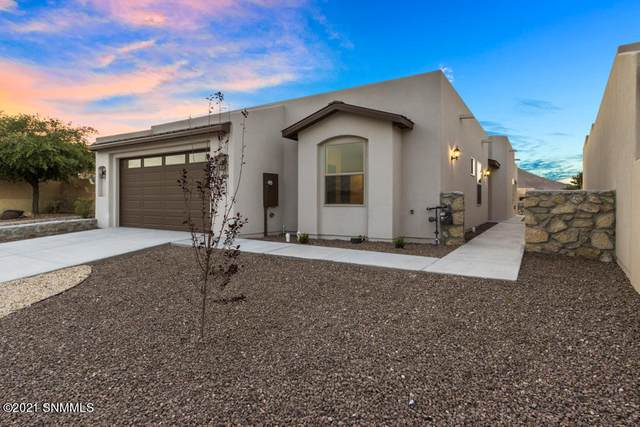 7024 Camino Nuevo Mejico, Las Cruces, NM 88007 (MLS #2101741) :: Las Cruces Real Estate Professionals