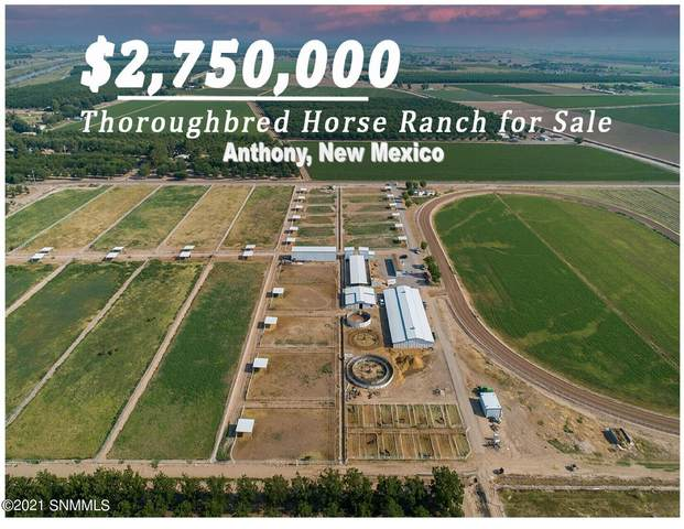 1525 W Ohara Road, Anthony, NM 88021 (MLS #2101793) :: Agave Real Estate Group