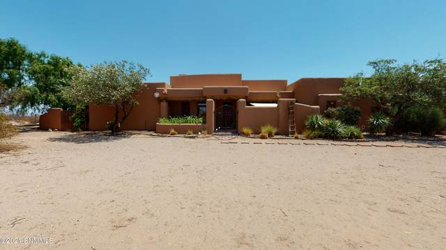 164 Haasville Road, Anthony, NM 88021 (MLS #2101866) :: Agave Real Estate Group