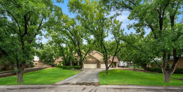 161 Mimosa Lane, Las Cruces, NM 88001 (MLS #2102614) :: Las Cruces Real Estate Professionals