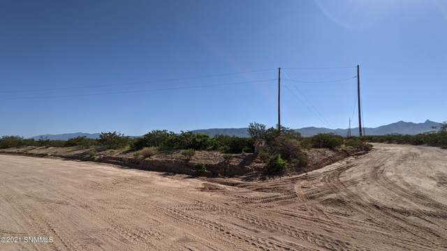 7650 Rabbit Run Lot 4 Road, Las Cruces, NM 88012 (MLS #2102758) :: Better Homes and Gardens Real Estate - Steinborn & Associates