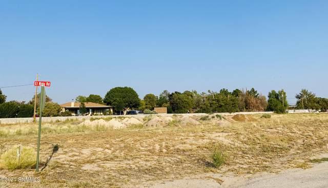 4640 El Nido Road, Las Cruces, NM 88007 (MLS #2102912) :: Better Homes and Gardens Real Estate - Steinborn & Associates