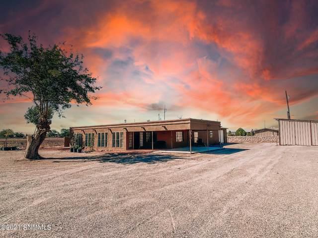 644 Jackson Lane, Las Cruces, NM 88007 (MLS #2103004) :: Agave Real Estate Group