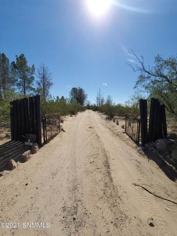 4010 Senna Drive, Las Cruces, NM 88011 (MLS #2103072) :: Las Cruces Real Estate Professionals