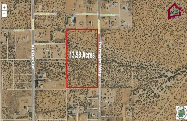 7305 Parrigin Way, Las Cruces, NM 88012 (MLS #1302331) :: Steinborn & Associates Real Estate