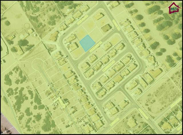 929 Prairie Lily Drive, Las Cruces, NM 88007 (MLS #1401016) :: Steinborn & Associates Real Estate