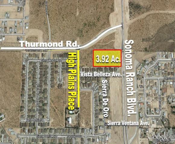 7580 High Plains Place A, Las Cruces, NM 88012 (MLS #1502781) :: Steinborn & Associates Real Estate