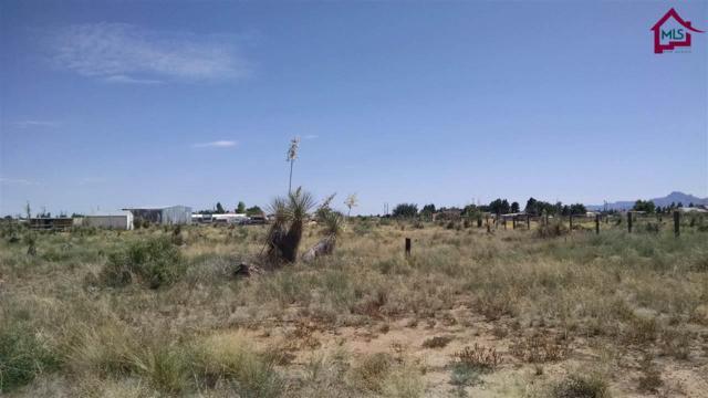 004 Kissiah Drive, Las Cruces, NM 88012 (MLS #1503306) :: Steinborn & Associates Real Estate