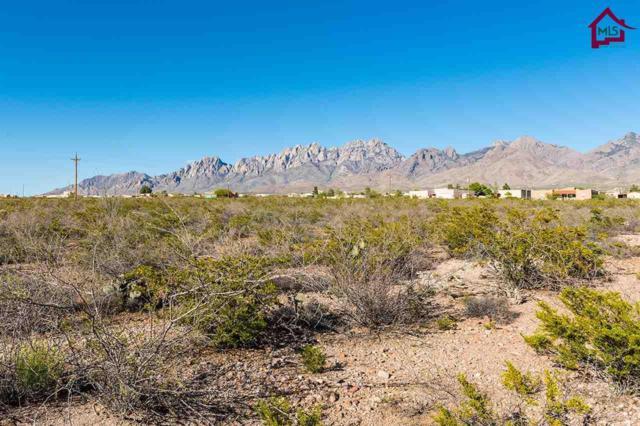 0000 Soledad Canyon Road, Las Cruces, NM 88011 (MLS #1602858) :: Steinborn & Associates Real Estate