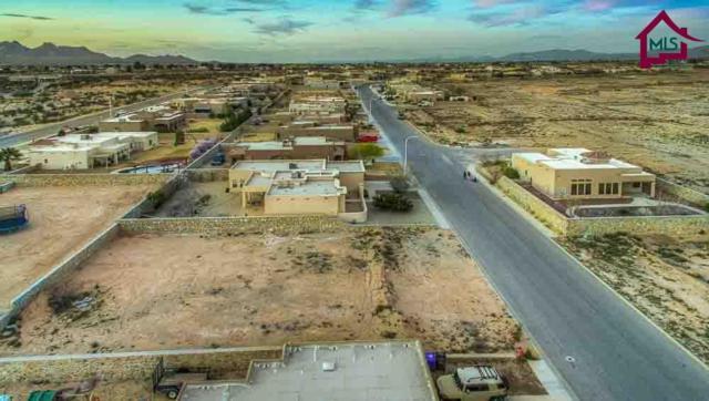 4531 Mesa Rico Drive, Las Cruces, NM 88011 (MLS #1603035) :: Steinborn & Associates Real Estate