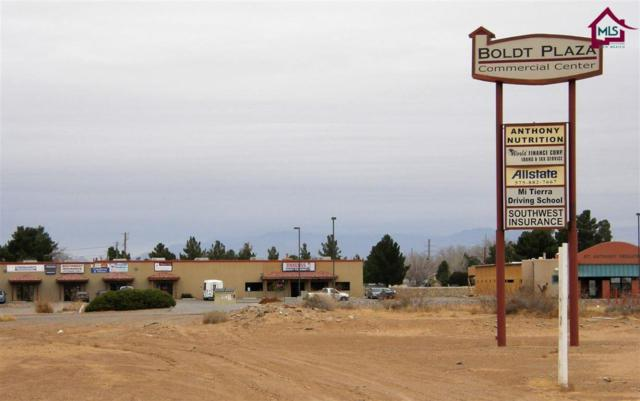 1275 Anthony Drive, Anthony, NM 88021 (MLS #1603317) :: Steinborn & Associates Real Estate