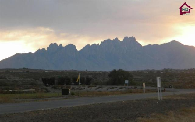210 Providence Road, Las Cruces, NM 88007 (MLS #1700699) :: Steinborn & Associates Real Estate