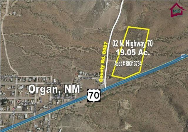 02 N Highway 70, Organ, NM 88052 (MLS #1700772) :: Steinborn & Associates Real Estate