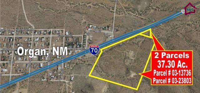 000 Highway 70, Organ, NM 88052 (MLS #1700773) :: Steinborn & Associates Real Estate