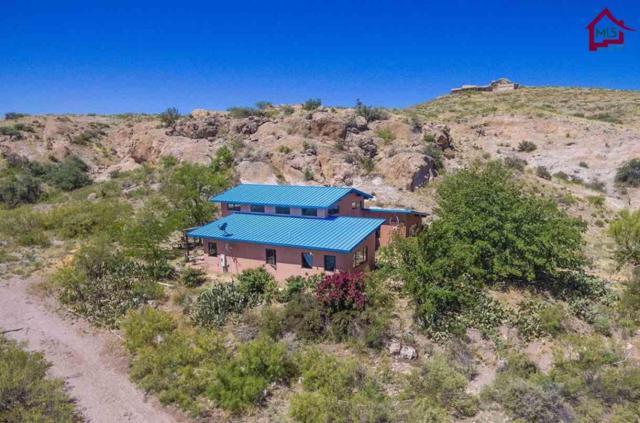 143 Heritage Drive, Hillsboro, NM 88042 (MLS #1701267) :: Steinborn & Associates Real Estate
